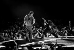 8.1.12 St. Louis, MO - Photo by Southern Reel